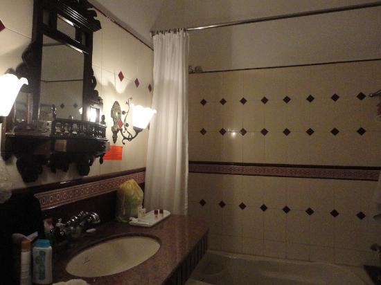 Jawahar Niwas Palace : bathroom