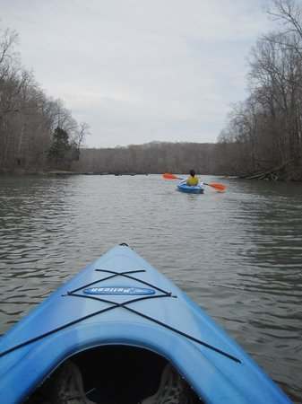 Burns, TN: kayaking on the lake