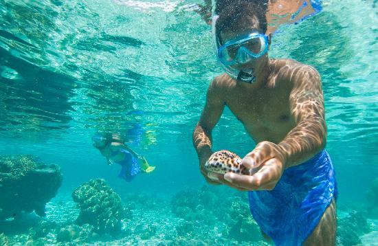 Vahine Island Resort : Snorkelling sur le motu