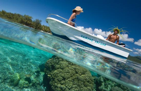 Vahine Island Resort : Snorkelling avec la Pirogue