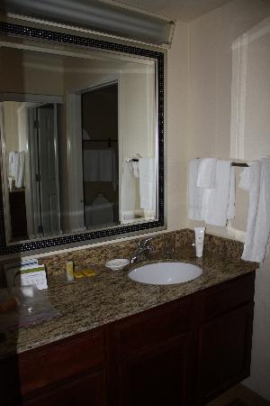 Residence Inn Sarasota Bradenton: Vanity