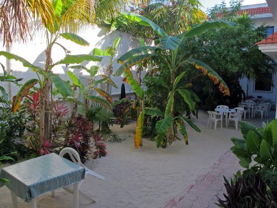 Maria Leticia Apartments : Garden