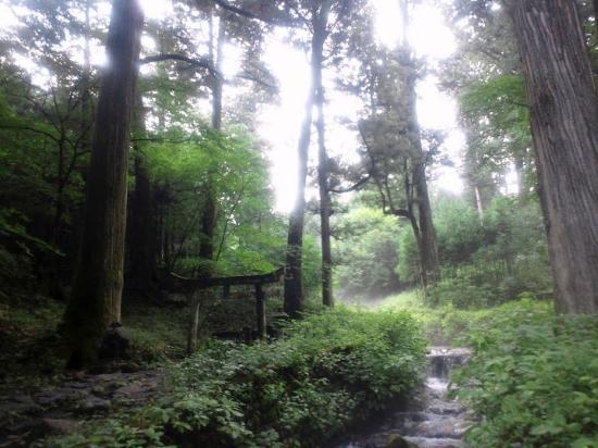 Takinoo Shrine: 子種権現