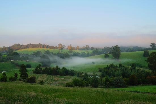 Brandy Creek, Australia: A misty morning on the rolling hills