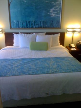 SpringHill Suites Tulsa: Comfie Bed