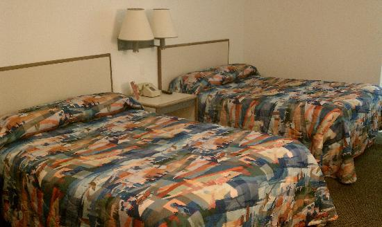 Motel 6 Akron : Our Room