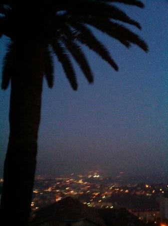Les Palmiers- Grasse : Vue de la chambre