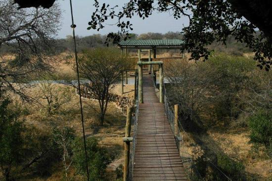 Tshukudu Bush Camp 사진