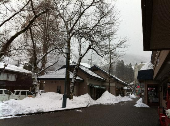 Hakuba Springs Hotel : front of hotel