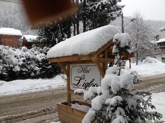 Hotel Igloo : jolie