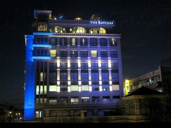 The Bayleaf: Bayleaf by night