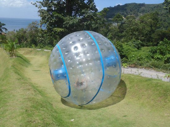Rollerball Zorbing Phuket: rolling down the hill