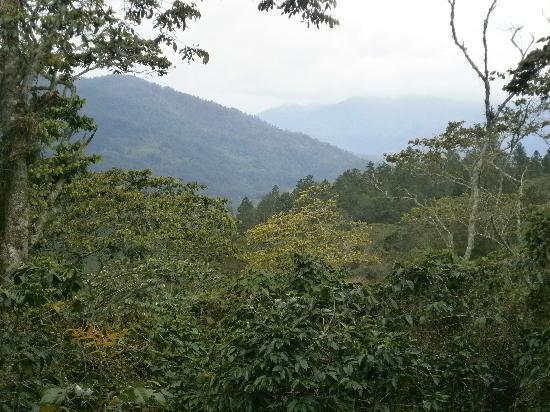 Estancia Natura at Spirit Mountain: la vista