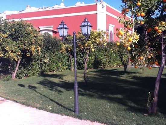 Executive L'Orangerie: la villa con il giardino
