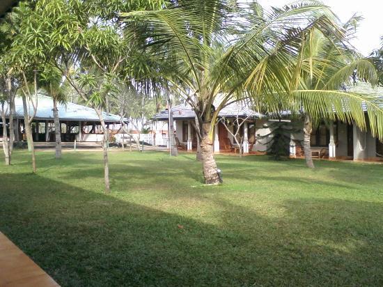 Carolina Beach Hotel Garden