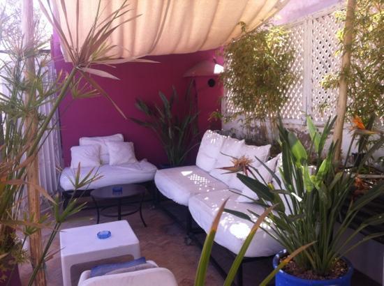 Riad L'Orchidee: terrazza