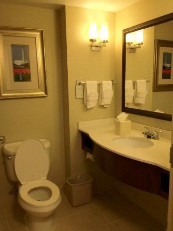 Hilton Garden Inn Arlington Courthouse Plaza: Bathroom