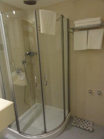 BEST WESTERN Regency Suites : Shower room