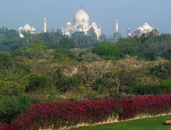 The Oberoi Amarvilas: Telephoto shot of Taj from balcony