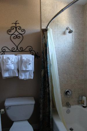 Casa Ojai Inn: Restroom/Shower