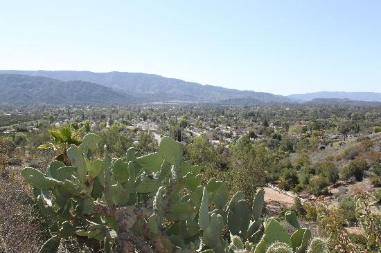Casa Ojai Inn: View from Shelf Road