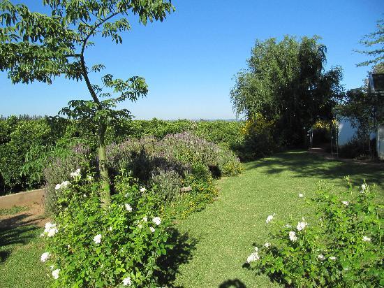 Lupus Den Country House: Lupus Den Garden