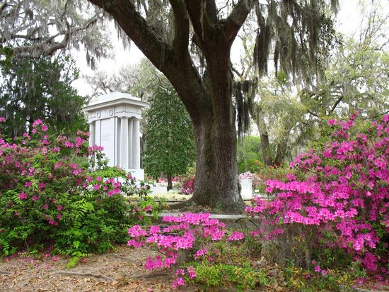 Bonaventure Cemetery Tours: Photo Courtesy Host, Donna Piechowski - BonaventureCemeteryTours.com