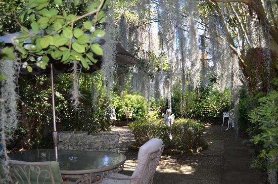 Antebellum Guest House: Courtyard