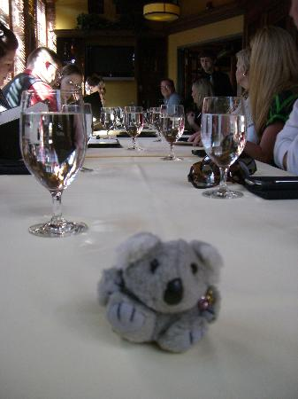 Greenville, Güney Carolina: Little Furry Guy getting ready to enjoy a treat at Devereaux's restaurant