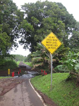 Kahanu Garden: Stream through the road