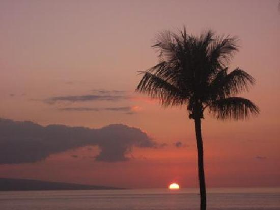 Kaleialoha Condominiums : Free Nightly Sunsets