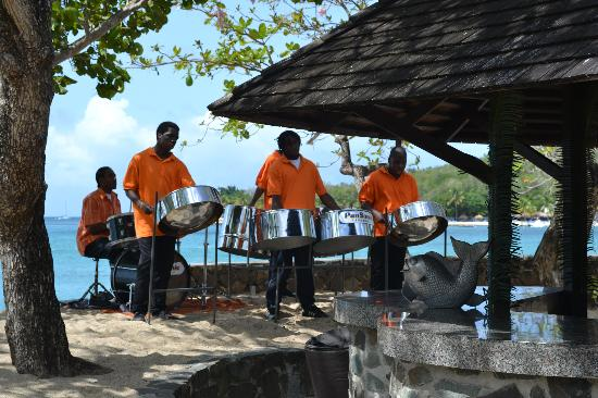 East Winds: Steel pans provide lunchtime entertainment