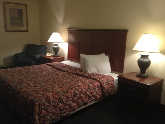 Delta Inn: Room king size