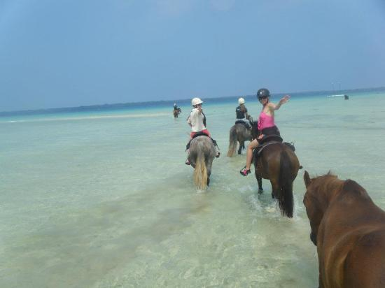Lope Lope Lodge: horseriding