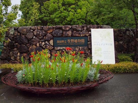 The Kochi Prefectural Makino Botanical Garden: 入口