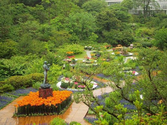 The Kochi Prefectural Makino Botanical Garden: 牧野博士と、ユリ
