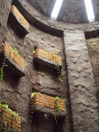 Kochi, Japan: 温室入口