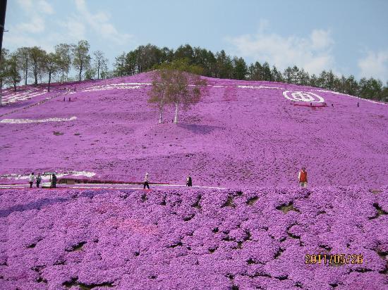 Ozora-cho, Japon : とにかく雄大です。