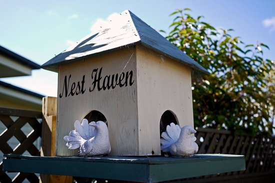 Nest Haven Bed and Breakfast: No vacancy in the birdhouse