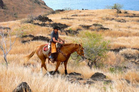 Shai Ena: Sunset ride Indian Ocean