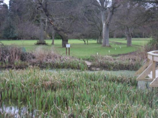Carberry Tower Mansion House and Estate : view from the pond to the front lawn