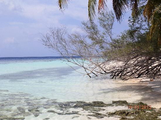 Embudu Village: le paradis...