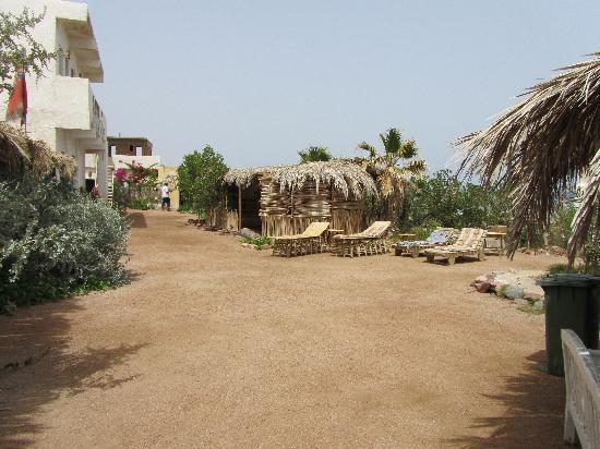 Sindbad Camp: Uitzicht vanaf de Sea Vieuw kamers