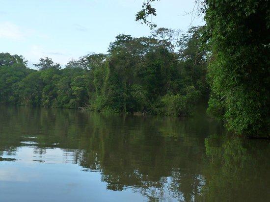 Caribbean Paradise Eco-Lodge: les canaux