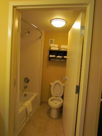 Hampton Inn & Suites Ft. Lauderdale/West-Sawgrass/Tamarac: banheiro