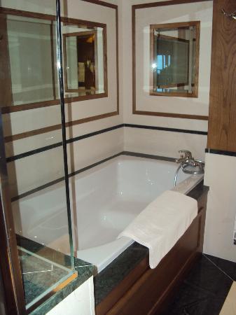 Hotel Annapurna : Bath