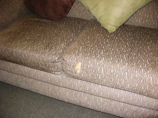 Mounts Bay Waters Apartment Hotel: Stain on Sofa