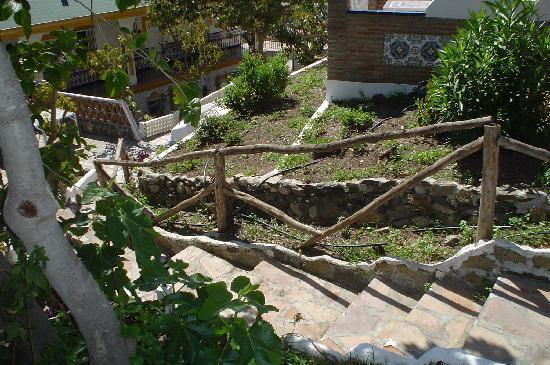Cortijo Los Vargas: the gardens