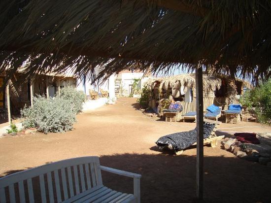 Sindbad Camp: de tuin