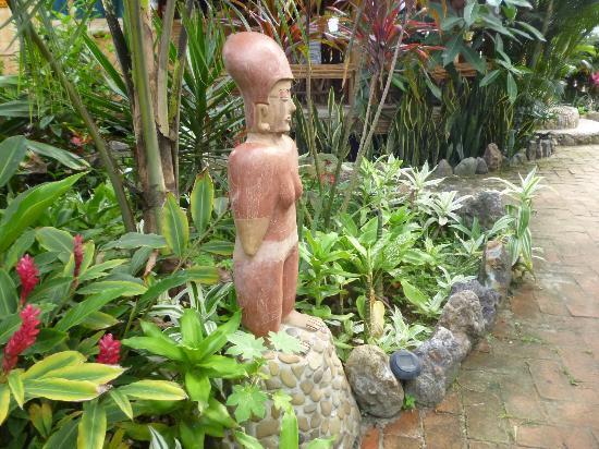 Balsa Surf Camp: Jardines